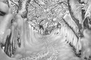 snow-landscapes-
